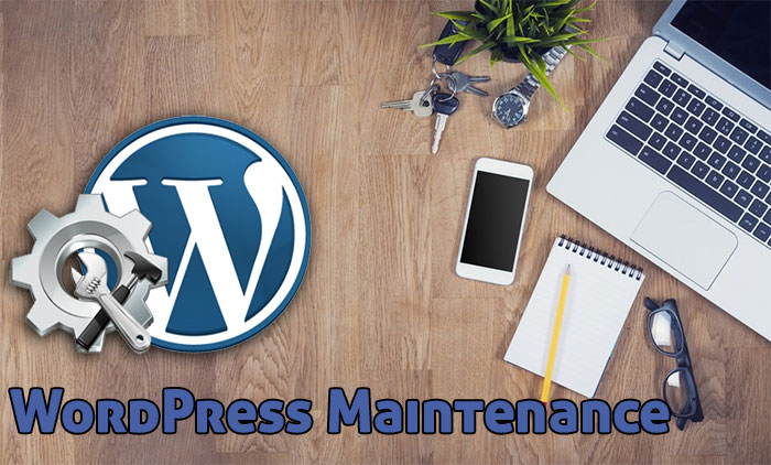 Wordpress Maintenance Plan from Blue Frog Web Design