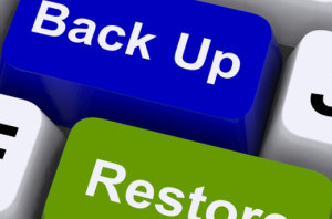 wordpress-backup, 8 Best WordPress Plug-ins in 2015