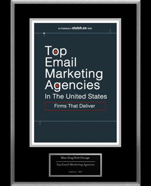 Blue Frog Web Design & Digital Marketing. Sacramento CA